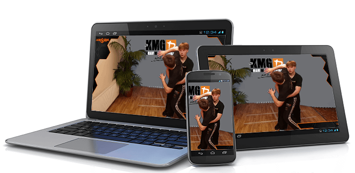 Online krav maga for adults